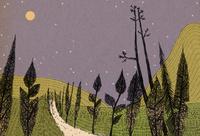 月夜 02653000091| 写真素材・ストックフォト・画像・イラスト素材|アマナイメージズ