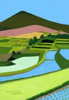 山と水のはった田んぼ