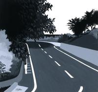 樹木がかぶる道路