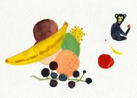 果物と果物を手にするサル