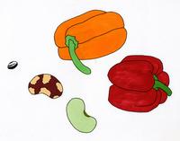 パプリカと豆