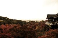 紅葉の清水寺 舞台