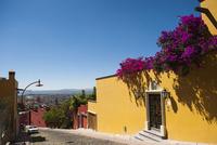 サン・ミゲル・デ・アジェンデ 町並み