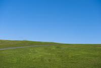 青空と草原 一本道
