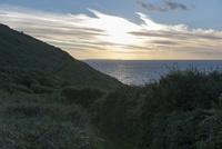 夕暮れの海へと続く草原の道