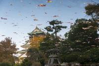 池に映った大阪城のリフレクション 02667001602  写真素材・ストックフォト・画像・イラスト素材 アマナイメージズ