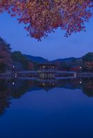 奈良公園  鷺池 浮見堂と紅葉 02667001693  写真素材・ストックフォト・画像・イラスト素材 アマナイメージズ