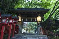 貴船神社と七夕の飾り 02667001990| 写真素材・ストックフォト・画像・イラスト素材|アマナイメージズ