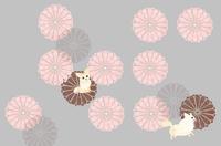 秋、菊、チワワ、和文様、10月