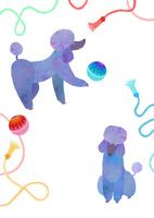 るんるんプードル 02671000140| 写真素材・ストックフォト・画像・イラスト素材|アマナイメージズ
