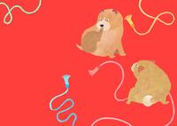 のほほん柴犬 02671000153| 写真素材・ストックフォト・画像・イラスト素材|アマナイメージズ