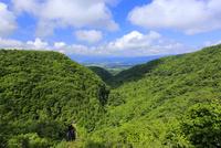 横谷観音展望台からの眺め