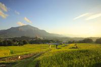 寺坂棚田と武甲山