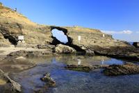 城ヶ島 馬の背洞門