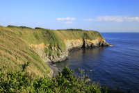 城ヶ島 ウミウ展望台からの眺め