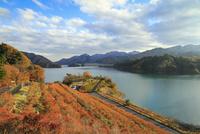 宮ヶ瀬湖と紅葉