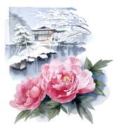 牡丹と雪 02678000021| 写真素材・ストックフォト・画像・イラスト素材|アマナイメージズ
