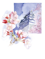 桜と城 02678000022| 写真素材・ストックフォト・画像・イラスト素材|アマナイメージズ