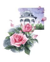バラとドーム
