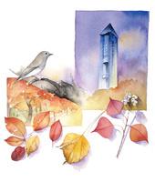秋の紅葉 02678000025| 写真素材・ストックフォト・画像・イラスト素材|アマナイメージズ