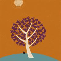 秋の太陽 02679000034| 写真素材・ストックフォト・画像・イラスト素材|アマナイメージズ