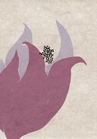 冬の花 02679000070| 写真素材・ストックフォト・画像・イラスト素材|アマナイメージズ