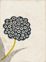 草花 02679000071| 写真素材・ストックフォト・画像・イラスト素材|アマナイメージズ