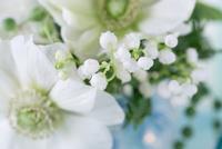 アネモネ、スズランの白とブルーのアレンジメント