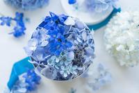 青のボックスアレンジメント 02684001533| 写真素材・ストックフォト・画像・イラスト素材|アマナイメージズ