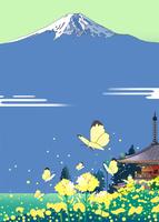富士山の麓の菜の花の寺
