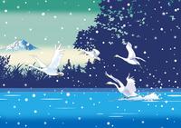 雪降る湖に白鳥