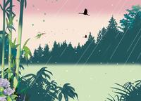 雨の竹林 02694000055| 写真素材・ストックフォト・画像・イラスト素材|アマナイメージズ