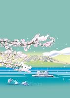 錦江湾にイルカ