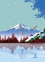 雪の湖畔に雁