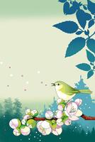 森に咲く梅