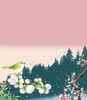 梅の咲く早春の森