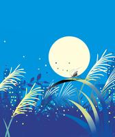 秋の虫と満月の夜