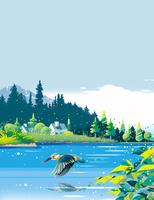 川蝉と湖と森 02694000202| 写真素材・ストックフォト・画像・イラスト素材|アマナイメージズ