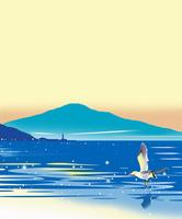 夜明け前の灯台と鴎