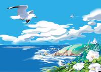 はまなすと鴎飛ぶ海