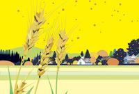 麦実る田園 02694000212| 写真素材・ストックフォト・画像・イラスト素材|アマナイメージズ