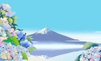 逆さ富士と紫陽花