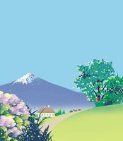 紫陽花と富士の見える丘 02694000229| 写真素材・ストックフォト・画像・イラスト素材|アマナイメージズ