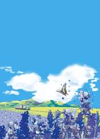 富良野 02694000241| 写真素材・ストックフォト・画像・イラスト素材|アマナイメージズ