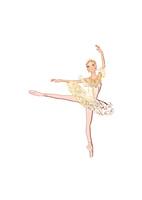 バレエ「眠りの森の美女」オーロラ姫を踊る女性 02697000047| 写真素材・ストックフォト・画像・イラスト素材|アマナイメージズ