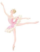 バレエ「眠りの森の美女」オーロラ姫を踊る女性 02697000078| 写真素材・ストックフォト・画像・イラスト素材|アマナイメージズ