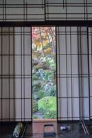 教林坊書院からの眺め 庭園と紅葉 02698000086  写真素材・ストックフォト・画像・イラスト素材 アマナイメージズ