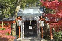 赤山禅院と紅葉 02698000104  写真素材・ストックフォト・画像・イラスト素材 アマナイメージズ