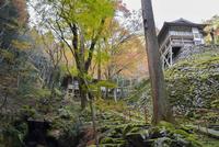 古知谷阿弥陀寺へ続く参道 02698000107  写真素材・ストックフォト・画像・イラスト素材 アマナイメージズ