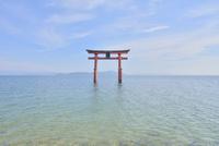 琵琶湖と白鬚神社 02698000117  写真素材・ストックフォト・画像・イラスト素材 アマナイメージズ